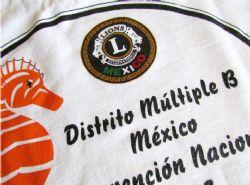 Estampado en prenda, camiseta blanca, a la medida con texto, logotipos a todo color. Durable a lavadas.